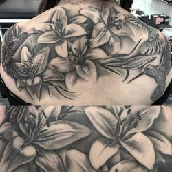 Lillies Cover-up